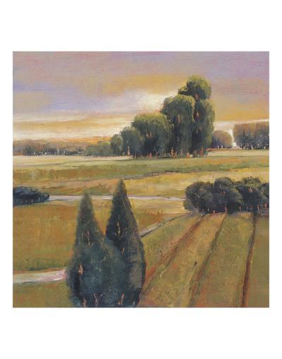 Summer Cypress-Adina Langford-Art Print