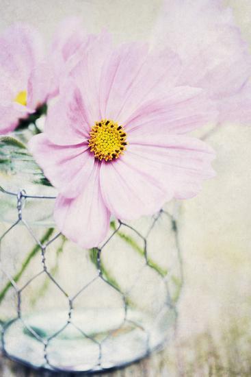 Summer Days III-James Guilliam-Giclee Print
