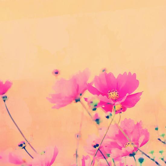 Summer Flower 2 - Square-Lebens Art-Giclee Print