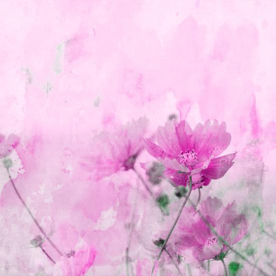 Summer Flower 4 - Square-Lebens Art-Giclee Print