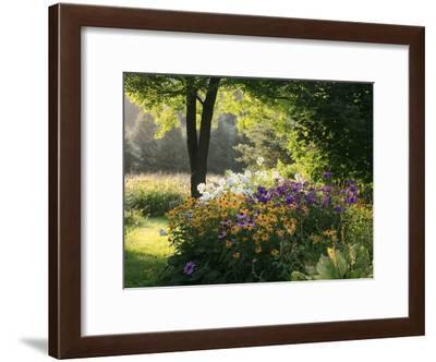 Summer Flower Adourn a Farm Garden-Kenneth Ginn-Framed Photographic Print