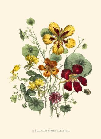 https://imgc.artprintimages.com/img/print/summer-flowers-i_u-l-f5bx140.jpg?artPerspective=n