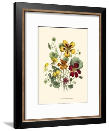 Summer Flowers I--Framed Art Print
