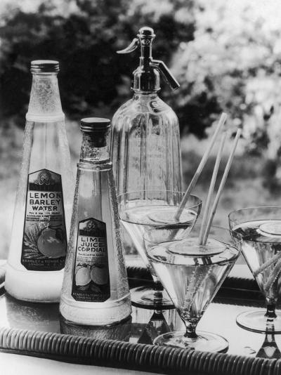Summer Fruit Drinks--Photographic Print