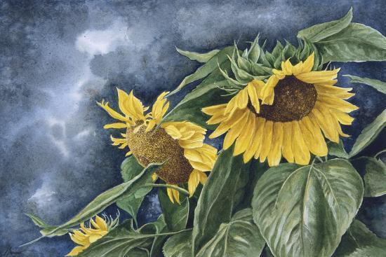 Summer Gold-John Morrow-Giclee Print