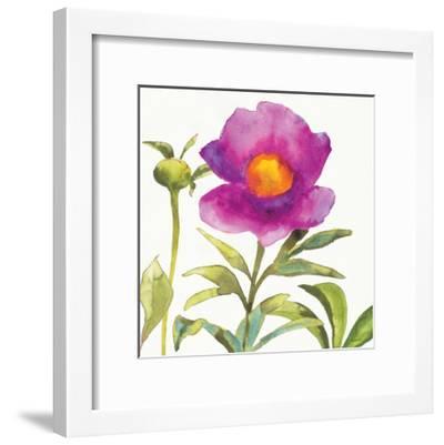 Summer Meadow Blossom Crop II-Shirley Novak-Framed Art Print