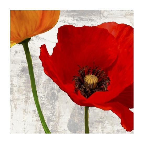 Summer Poppies I-Jenny Thomlinson-Art Print