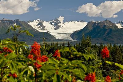 Summer Scenic of Grewingk Glacier and the Kenai Mountains of Kachemak Bay State Park-Design Pics Inc-Photographic Print