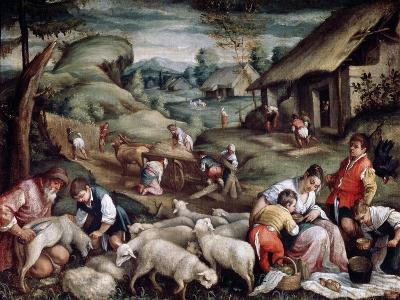 Summer. Sheep Shearing, C1570-C1580-Francesco Bassano-Giclee Print