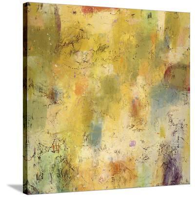 Summer Spectrum-Jeannie Sellmer-Stretched Canvas Print