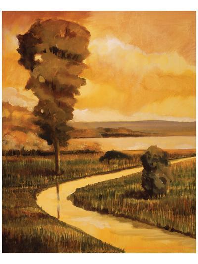 Summer Stream-Judith D'Agostino-Art Print