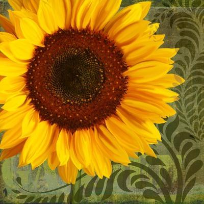 https://imgc.artprintimages.com/img/print/summer-sun-i_u-l-psg8zy0.jpg?p=0