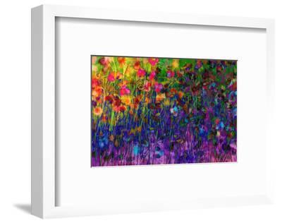 Summer Sweetness-Claire Westwood-Framed Art Print