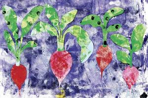 Radishes by Summer Tali Hilty