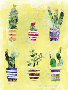 Succulent Garden by Summer Tali Hilty