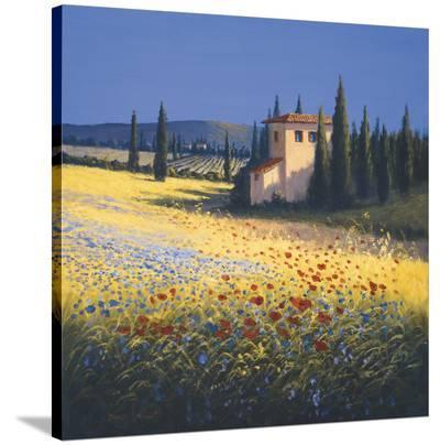 Summer Villa-David Short-Stretched Canvas Print