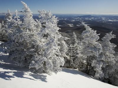 Summit View from the Top of Madonna Mountain, Vermont, with Rime Covered Trees-Tim Laman-Photographic Print