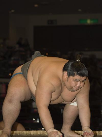 Sumo Wrestler Competing, Grand Taikai Sumo Wrestling Tournament, Kokugikan Hall Stadium, Tokyo-Christian Kober-Photographic Print