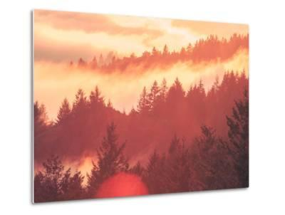 Sun Burned Fog Mount Tamalpais, Marin County, San Francisco-Vincent James-Metal Print