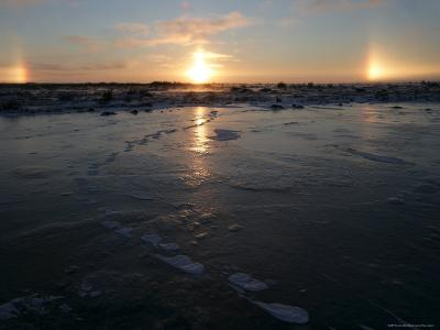 Sun Dogs, Polar Bear Tracks, Churchill, Hudson Bay, Manitoba, Canada-Thorsten Milse-Photographic Print