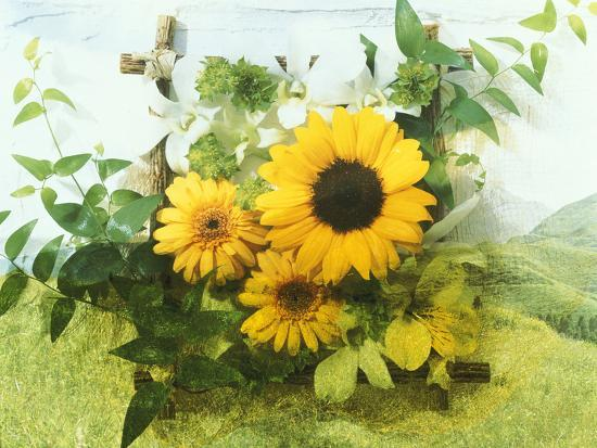 Sun Flowers And Green Vine Bouquet with Green Mountain Tops--Photographic Print