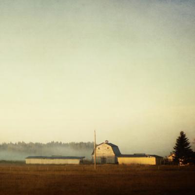 Sun on the Barn-Roberta Murray-Photographic Print