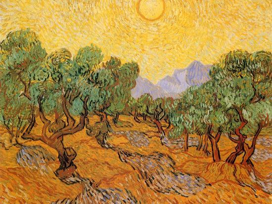 Sun over Olive Grove, 1889-Vincent van Gogh-Premium Giclee Print
