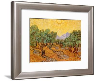 Sun over Olive Grove, 1889-Vincent van Gogh-Framed Giclee Print