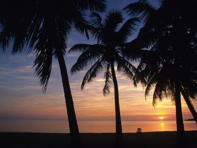 Sun Rise near Placencia, Belize-Bill Hatcher-Photographic Print