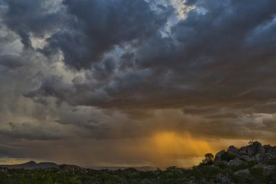 Sun Sets On Mopane Trees & Granite Boulders, Rain Storm Through Damaraland At The Hoada Campsite-Karine Aigner-Photographic Print