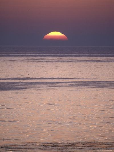 Sun Setting over the Pacific Ocean, California-Rich Reid-Photographic Print