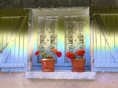 https://imgc.artprintimages.com/img/print/sun-shining-on-blooming-geranium-plants-on-windowsill_u-l-q10x4hf0.jpg?p=0