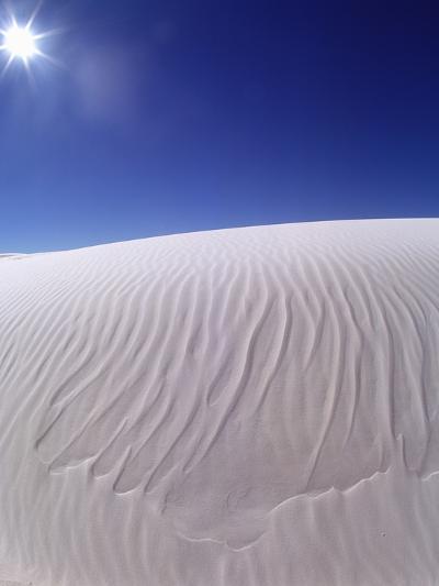Sun Shining on Desert Sand-Jim Zuckerman-Photographic Print