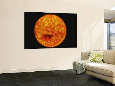 Sun--Wall Mural