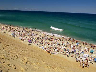 Sunbathers at Newcomb Hollow Beach in Wellfleet-Michael Melford-Photographic Print