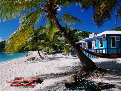 https://imgc.artprintimages.com/img/print/sunbathing-on-white-bay-beach-jost-van-dyke_u-l-p21a8d0.jpg?p=0