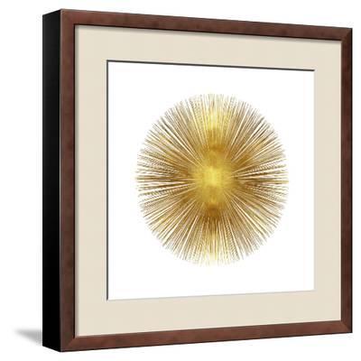 Sunburst I-Abby Young-Framed Giclee Print
