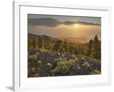 Sundown Las Manchas, Parque Natural Cumbre Vieja, Island La Palma, Canary Islands, Spain-Rainer Mirau-Framed Photographic Print