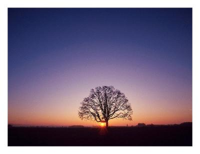 Sundown-PhotoINC Studio-Art Print
