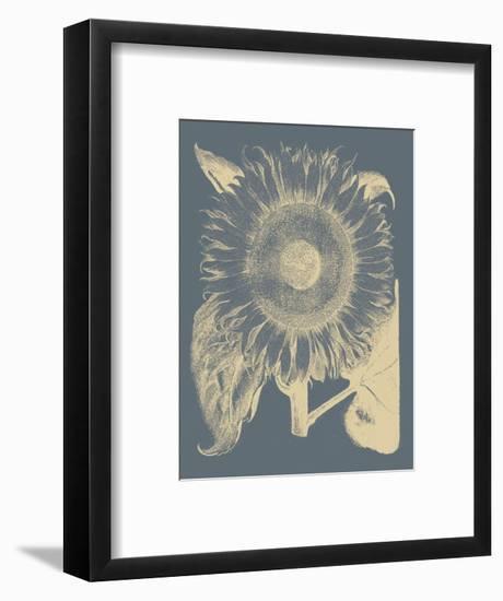 Sunflower 2-Botanical Series-Framed Art Print