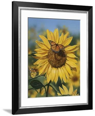 Sunflower and Butterflies-William Vanderdasson-Framed Giclee Print