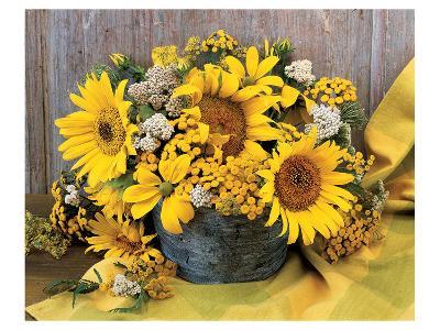 Sunflower Arrangement II--Art Print
