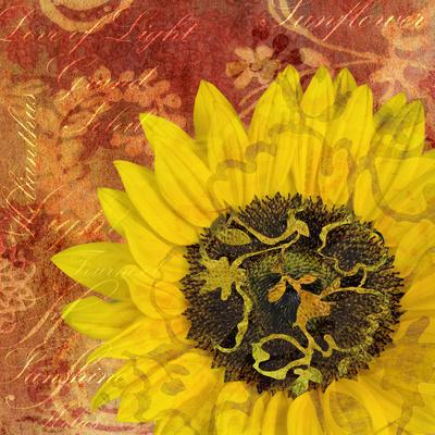https://imgc.artprintimages.com/img/print/sunflower-love-of-light_u-l-q12u4f10.jpg?p=0