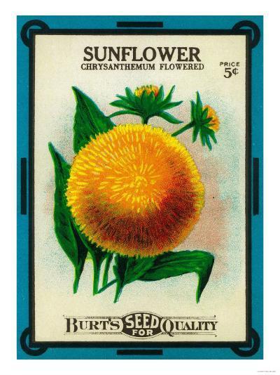 Sunflower Seed Packet-Lantern Press-Art Print