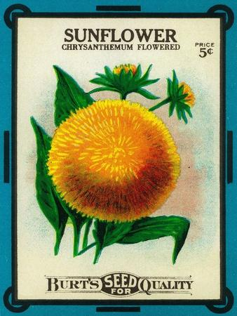 https://imgc.artprintimages.com/img/print/sunflower-seed-packet_u-l-q1go4f90.jpg?p=0