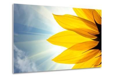 Sunflower-logoboom-Metal Print