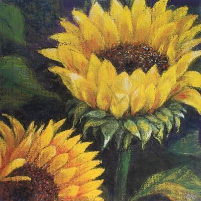 https://imgc.artprintimages.com/img/print/sunflowers-2016_u-l-q1dy1sp0.jpg?p=0