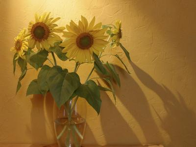 Sunflowers-Anna Miller-Photographic Print