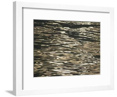 Sunlight Reflects off the Rippling Water-Michael Melford-Framed Photographic Print