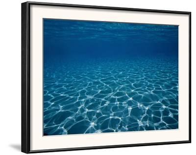 Sunlight Reflects on the Sea Floor Through Crystal Clear Blue Water-Raul Touzon-Framed Photographic Print
